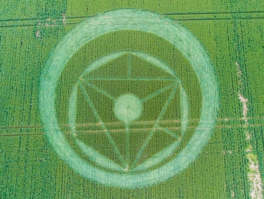 Crop circle seen near Southend, Essex